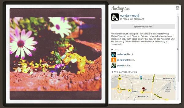 Instagram Webansicht
